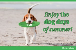 Better4U Foods Dog Days of Summer